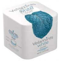 Velamints White Gum Peppermint košļājamā gumija ar piparmētru garšu 40g (20 gab.)